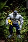 hulk holding yellow flower