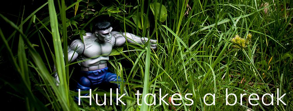 Hulk takes a break
