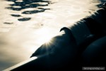 hand sun shine reflection water