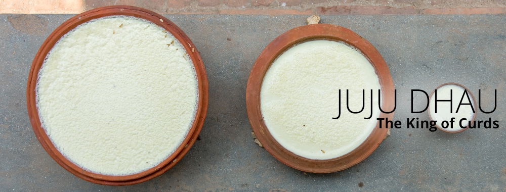 Juju Dhau: The King of Curds