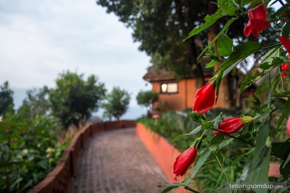 The Flowers of Dhulikhel Mountain Resort